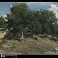 Corot.jpg
