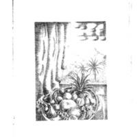 PS21.jpg